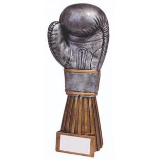 Challenger Boxing Glove Trophy